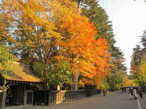 角館武家屋敷の秋