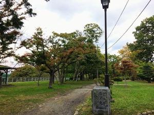 盛岡城跡公園紅葉情報10.5二の丸