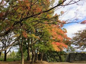 盛岡城跡公園本丸2紅葉