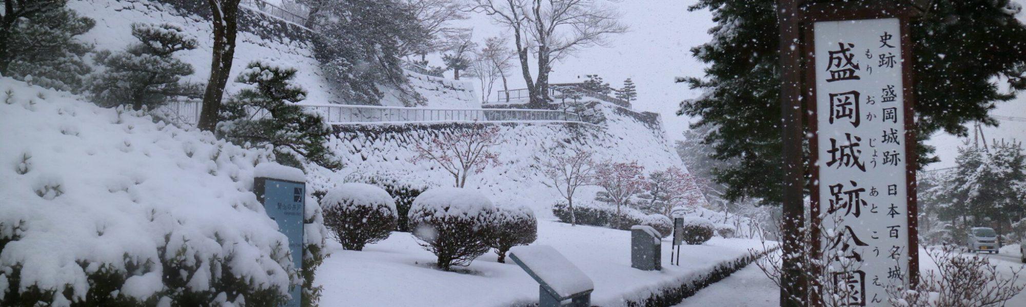 雪景色の盛岡城跡公園