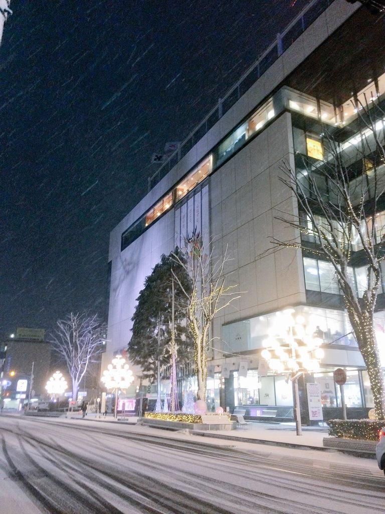 菜園川徳前のクリスマスイルミネーションと吹雪